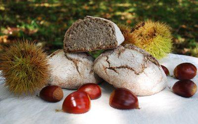 Castañam: innovación con sabor gourmet